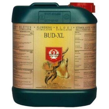 Bud-XL - 5 L