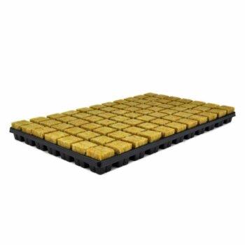 Cultilene 77 קוביות