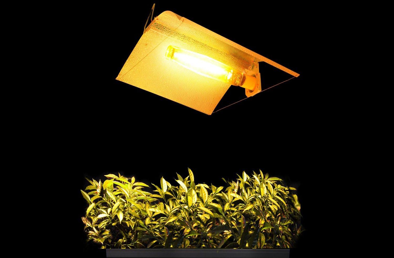 מוצרי תאורה